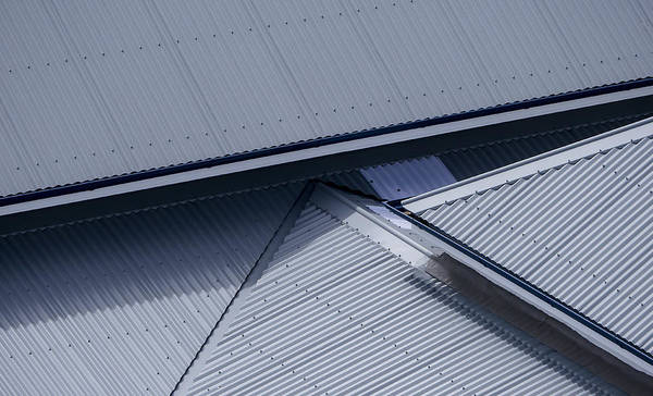 Photograph - Roof Lines - Montague Island - Australia by Steven Ralser