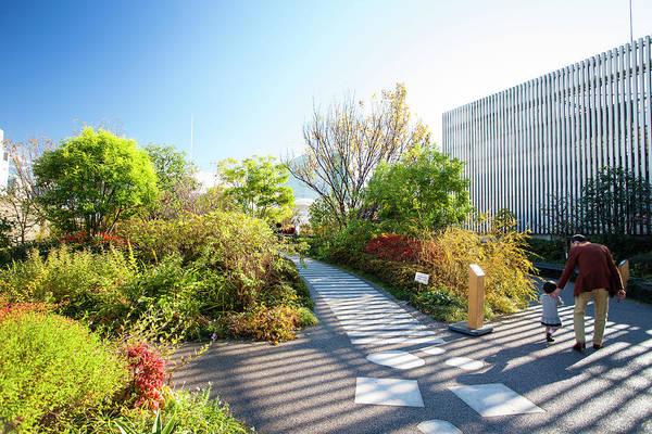 Roof Top Garden, Isetan Department Art Print