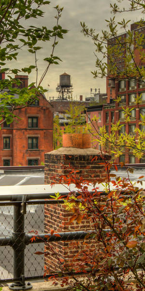 Photograph - Roof Tops by Dave Hahn