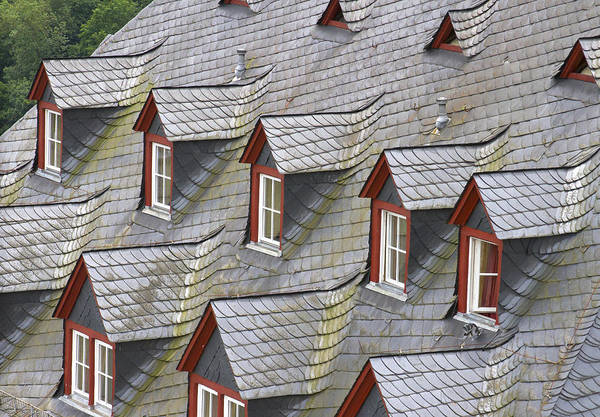 Photograph - Roof Tops by Jenny Setchell