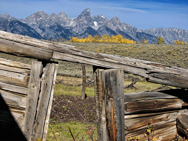 Teton National Park Digital Art - Room With A View by Kathleen Bishop