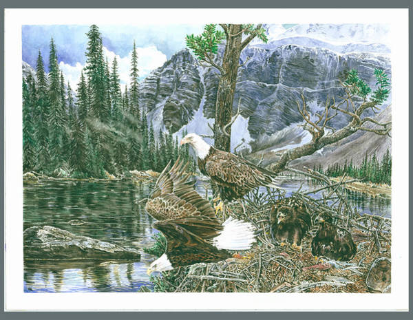 Baby Eagle Drawing - Room With A View by Mark Mahoney