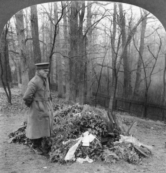 Roosevelt Island Wall Art - Photograph - Roosevelt Grave, 1919 by Granger