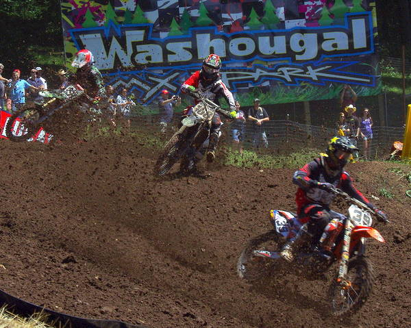 Washougal Photograph - Roost 5 by Brian McCullough