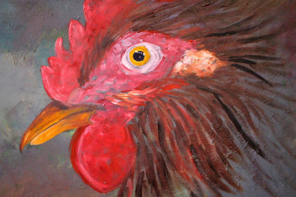 Wall Art - Painting - Rooster by Nancy Merkle