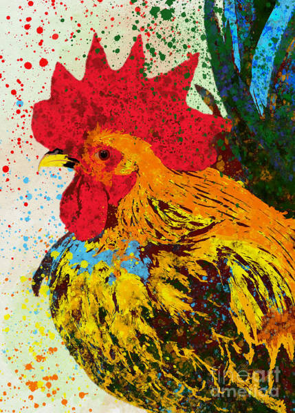 Bird Watercolor Mixed Media - Rooster  by Olga Hamilton