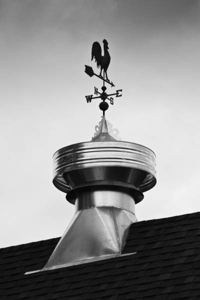 Photograph - Rooster Vane by Christi Kraft