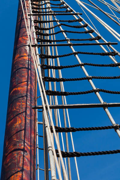 Photograph - Rope Ladder by Ed Gleichman