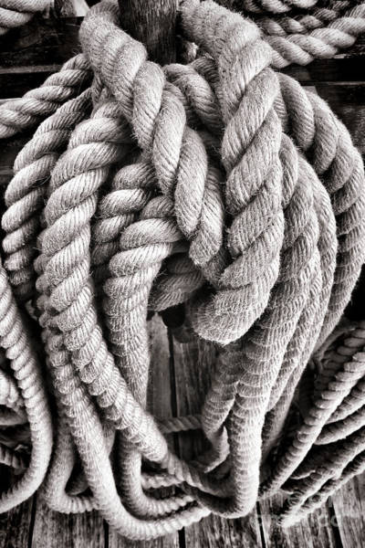 Rigging Photograph - Rope by Olivier Le Queinec