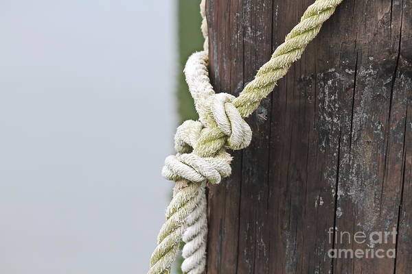 Screw Pile Wall Art - Photograph - Rope On A Post by Cathy Lindsey