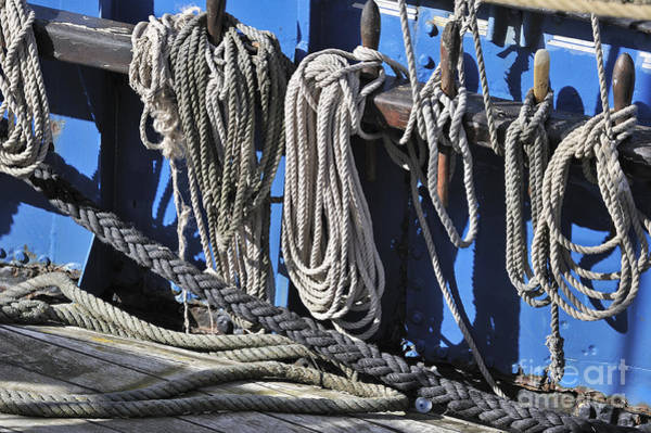 Photograph - Ropes by Arterra Picture Library