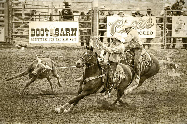 Pferd Photograph - Roping by Caitlyn  Grasso