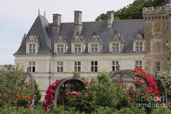 Villandry Photograph - Rose And Cabbage Garden Chateau Villandry by Christiane Schulze Art And Photography