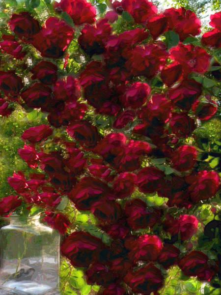 Rose Avalanche Art Print