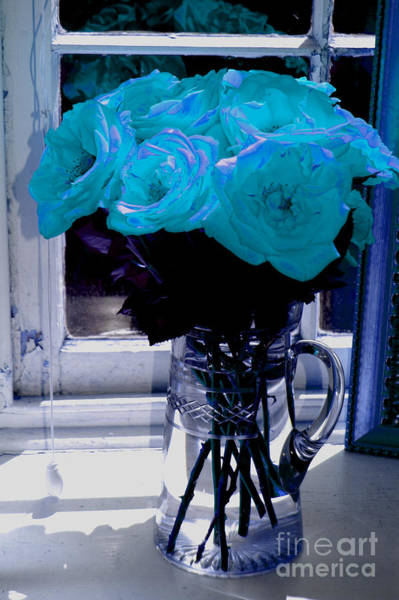Photograph - Rose Blues by Donna Bentley