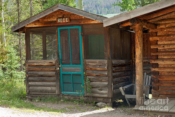 Photograph - Rose Cabin At The Holzwarth Historic Site by Fred Stearns