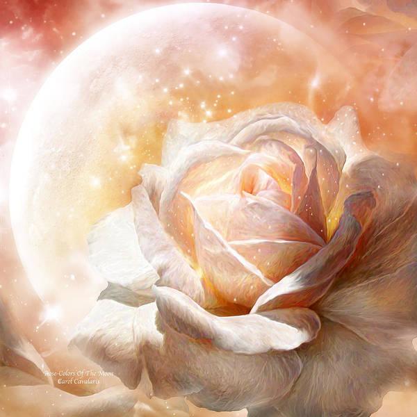 Mixed Media - Rose - Colors Of The Moon by Carol Cavalaris