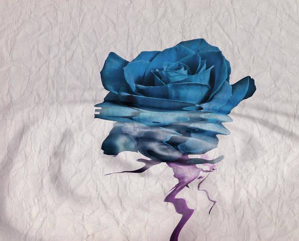 Rose Flower Digital Art - Rose En Variation - 02bt01 by Variance Collections