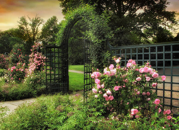 Garden Roses Digital Art - Rose Garden Gate by Jessica Jenney