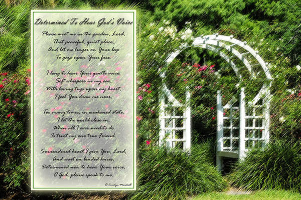 Photograph - Rose Garden Prayer by Carolyn Marshall
