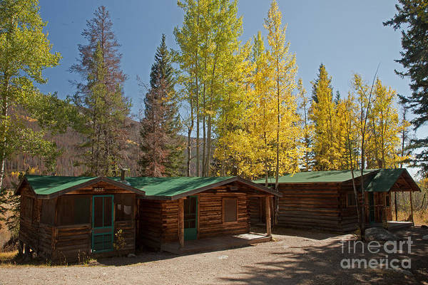 Photograph - Rose Twin 1 And Twin 2 Cabins At The Holzwarth Historic Site by Fred Stearns