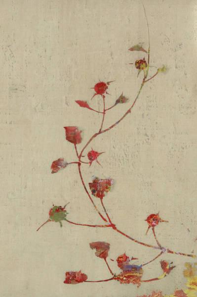 Wall Art - Digital Art - Rosebush by Aged Pixel