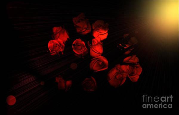 Photograph - Roses And Black by Oksana Semenchenko