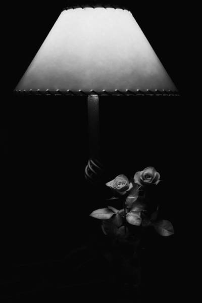 Photograph - Roses By Lamplight Bw by Ron White