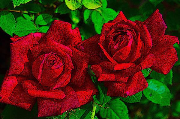 Photograph - Roses by Dragan Kudjerski