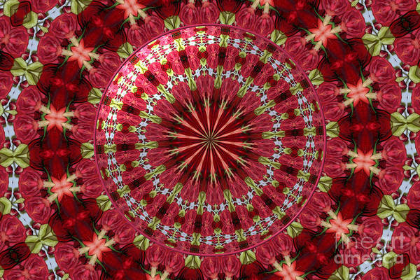 Photograph - Roses Kaleidoscope Under Glass 30 by Rose Santuci-Sofranko