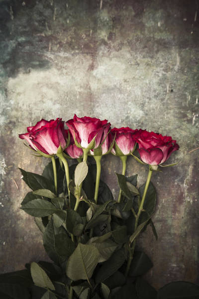 Photograph - Roses by Maria Heyens