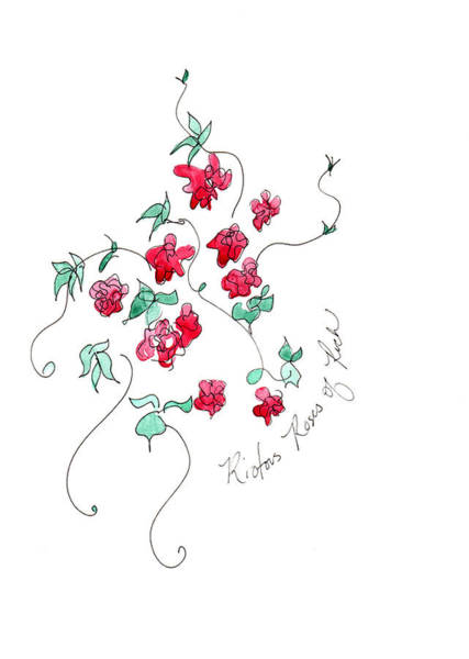 Painting - Roses Of Ruch  by Anna Elkins