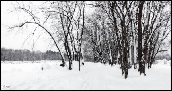 Photograph - Rotary Park In New Snow by Wayne King