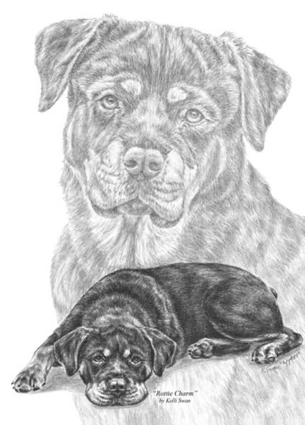 Drawing - Rottie Charm - Rottweiler Dog Print by Kelli Swan