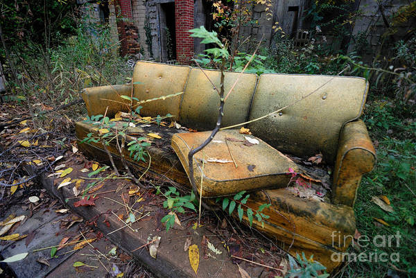 Abandonment Photograph - Rotting Yellow Sofa by Amy Cicconi