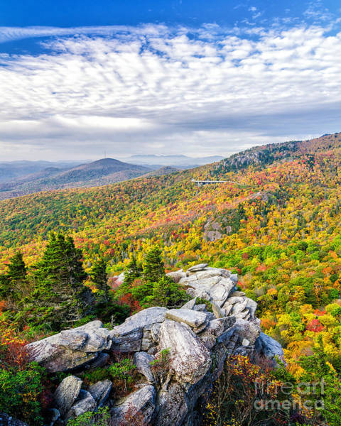 Wall Art - Photograph - Rough Ridge Autumn by Anthony Heflin
