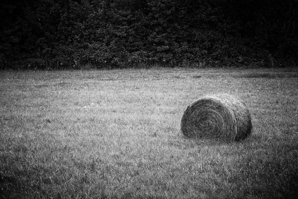 Photograph - Round Bale by Patrick M Lynch