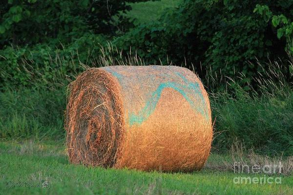 Meadowlands Painting - Round Hay Bale by J McCombie
