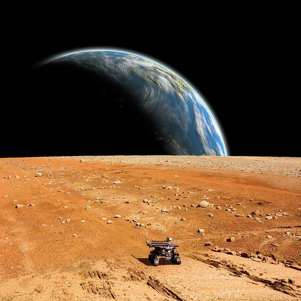 Mixed Media - Rover  by Marc Ward