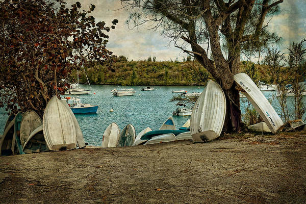Photograph - Row Of Row Boats by Lucinda Walter