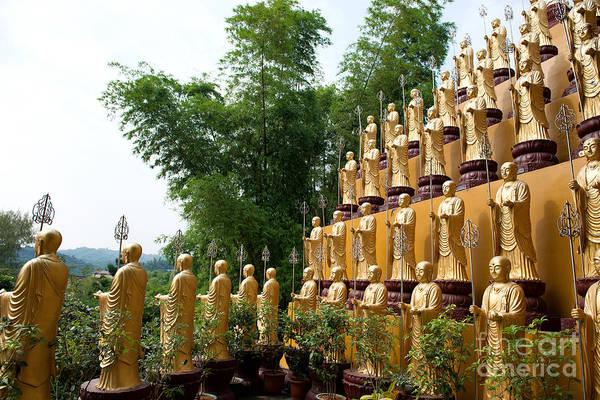 Photograph - Rows Of Dizhangwang Statues by Yew Kwang