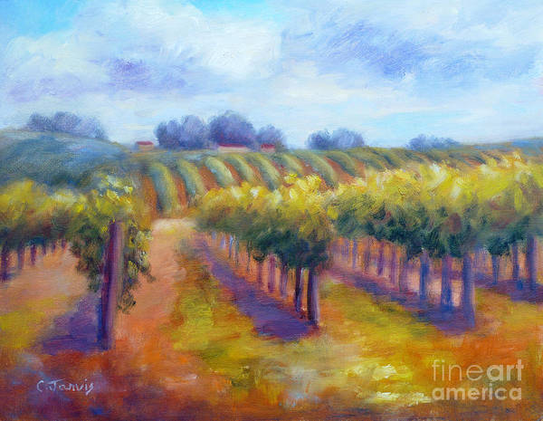 Painting - Rows Of Vines by Carolyn Jarvis
