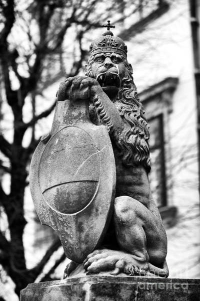 Wall Art - Photograph - Royal Lion Statue Vienna by John Rizzuto