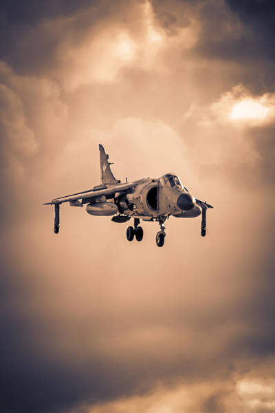 Av-8 Photograph - Royal Navy Sea Harrier by Chris Smith