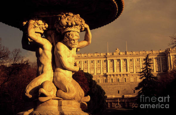 Photograph - Royal Palace Gardens Madrid by James Brunker