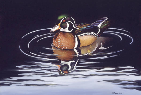 Water Fowl Painting - Royal Reflections by Richard De Wolfe