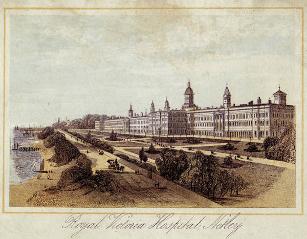 Wall Art - Drawing - Royal Victoria Hospital  At Netley by Mary Evans Picture Library