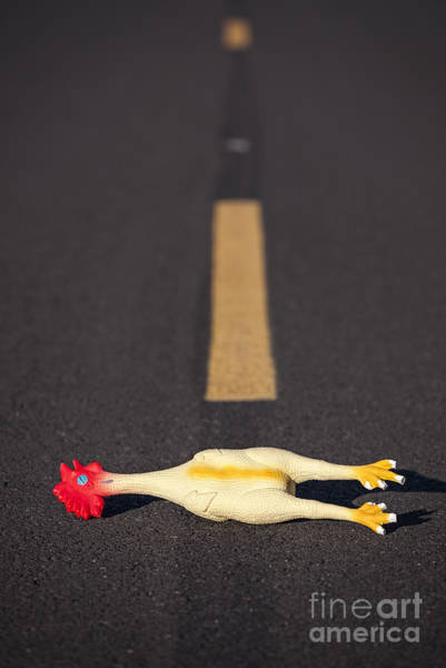 Photograph - Rubber Chicken On Road by Bryan Mullennix