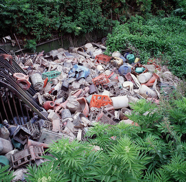 Litter Photograph - Rubbish by Robert Brook/science Photo Library