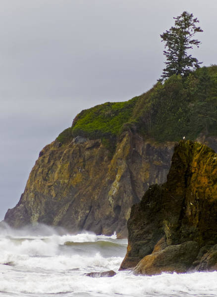 Photograph - Ruby Beach Surf II by Greg Reed